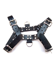 ROUGE O.T.H. FRONT HARNESS