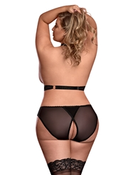 Alternate back view of RISQUE BUSINESS CUPLESS PLUS SIZE BRA SET